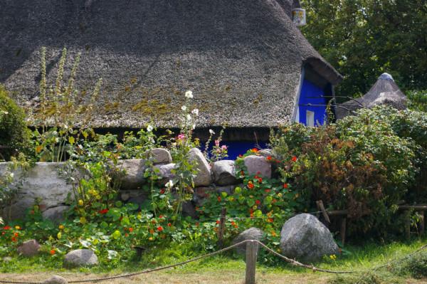 Blaues Haus auf Hiddensee