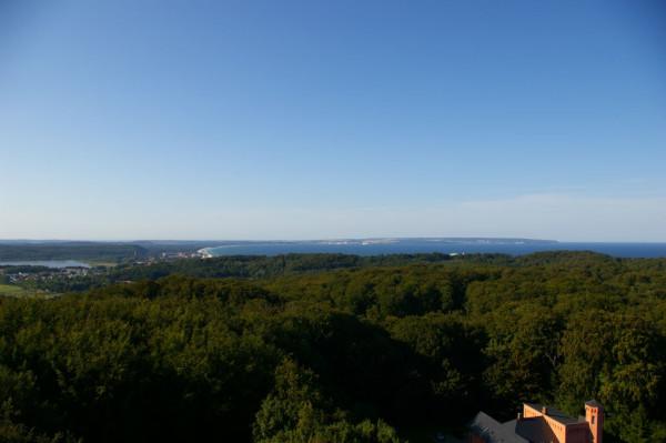 Blick vom Turm des Jagdschlosses 8